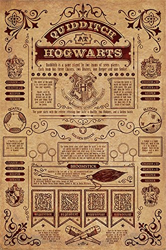 Harry Potter Poster Quidditch at Hogwarts Quidditch Regeln (Englisch!)