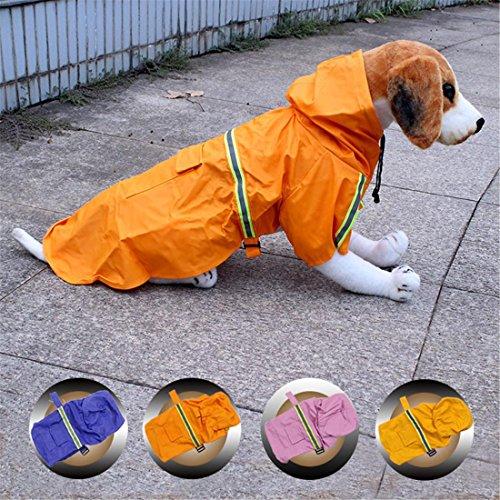 Huisdier hond regenjas regenjas jas voor kleine honden grote honden zomer winter regenjas regenjas regenjas regenjas regenjas regenjas regenjas regenjas regenjas regenjas 4 kleuren