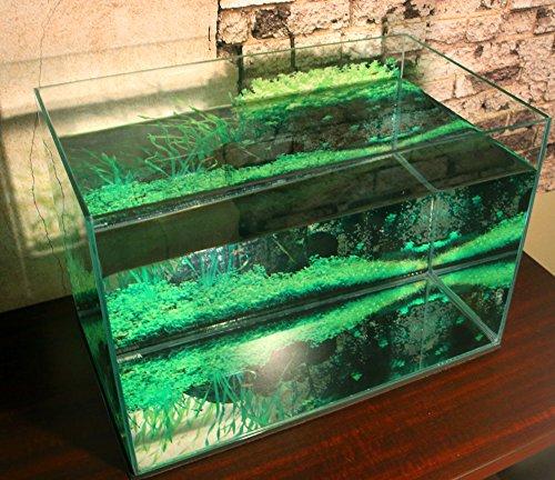 アクアグラフィックス『水槽バックスクリーン』