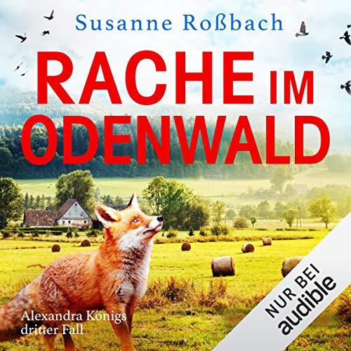 Rache im Odenwald Titelbild