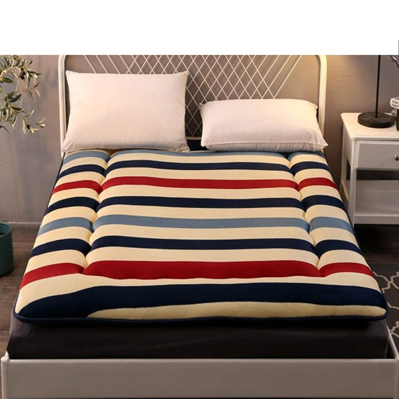 Tatami Mattress,Padded Warm Bed Mattress,Sponge mat,Hypoallergenic Comfort Sleeping pad,Foldable for Dormitories-E 90x200cm(35x79inch)