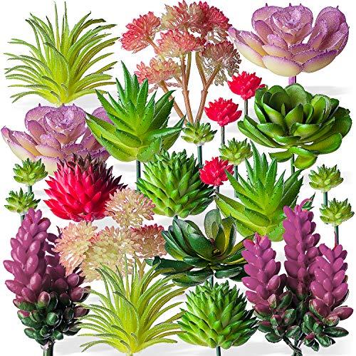24 Mini Artificial Succulent Plants Unpotted : Fake Succulents Picks Realistic Plastic Cactus Stems for Terrarium Bulk Small Faux Assorted Arrangements Flocked Greenery