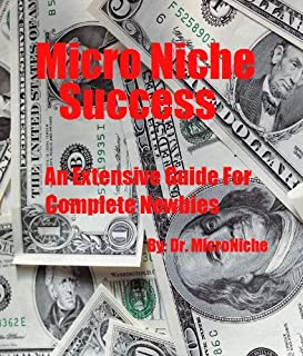 Micro Niche Success: An Extensive Guide For Complete Newbies