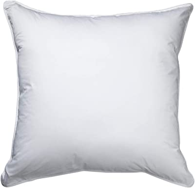 Amazon Com Mypillow Roll Amp Goanywhere Pillow Raspeberry