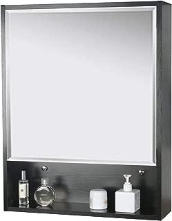 LUCKWIND Bathroom Medicine Cabinet Mirror - 24