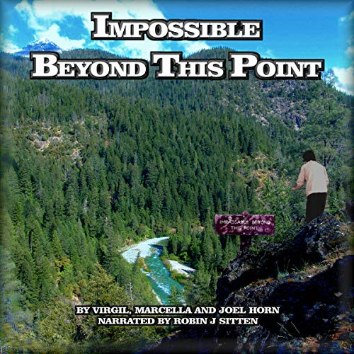 Impossible Beyond This Point audiobook cover art