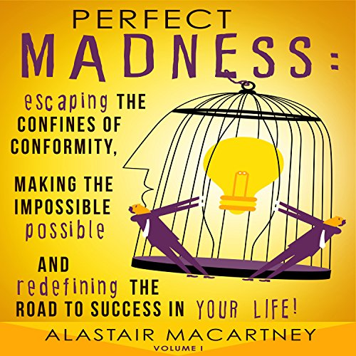 Perfect Madness audiobook cover art
