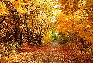 DASHAN 7x5ft Fall Leaves Forest Fall Backdrop for Photography Fall Wedding Autumn Fall Foliage Party Autumn Park Fall Bridal Shower Background Fall Birthday Outdoor Travel Family YouTube Photo Props