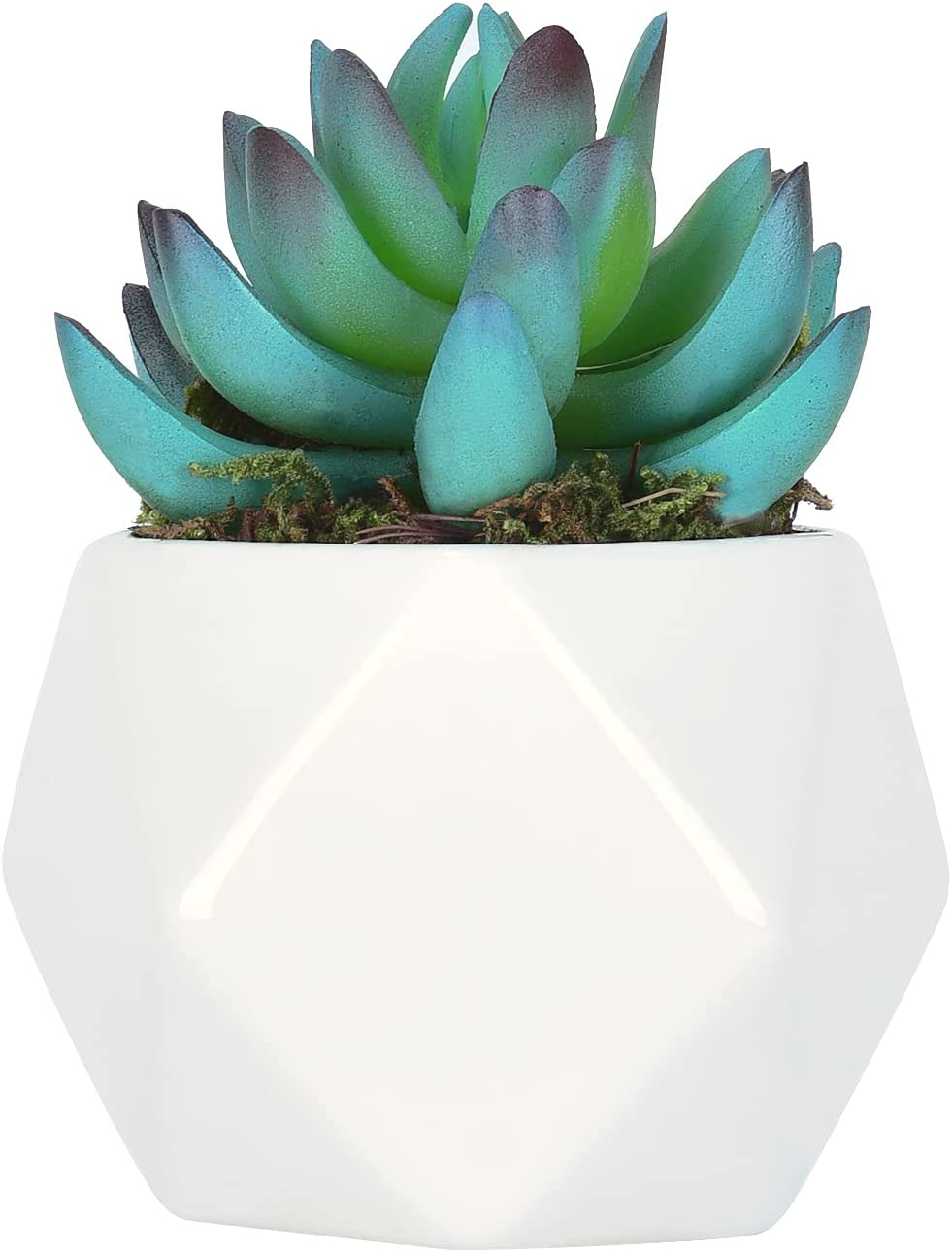 Artificial Succulent Plants, Faux Assorted Green Unpotted Faux Succulent Agave Floral Arrangement Fleshed Succulent Plant Textured for Home Indoor Outdoor Wedding Party Garden Decor