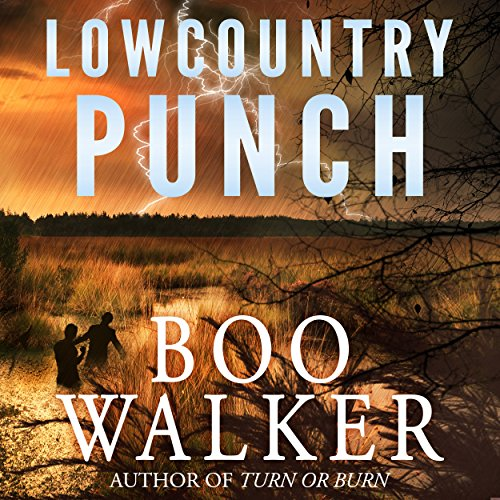 Lowcountry Punch audiobook cover art