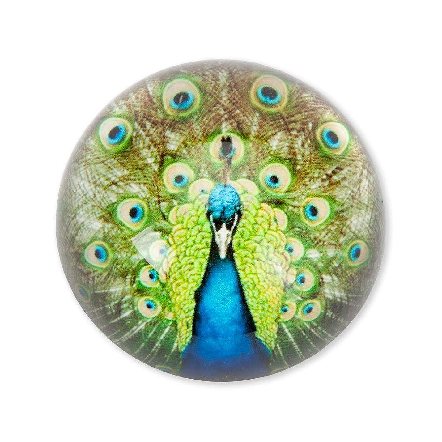 早熟流行しているパートナーBits and Pieces - クジャクガラスペーパーウェイト - 重みのあるアートガラスペーパーウェイト - ホームオフィスデスクアクセサリー