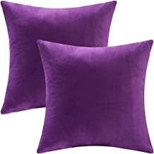 LANSA Microfiber Velvet Throw Pillow Covers Decorative Pillowcases Cushion Cover Soft & Smooth Solid Various Choices 22 Colors (Purple-P21, 16 x 16 (Set of 2))