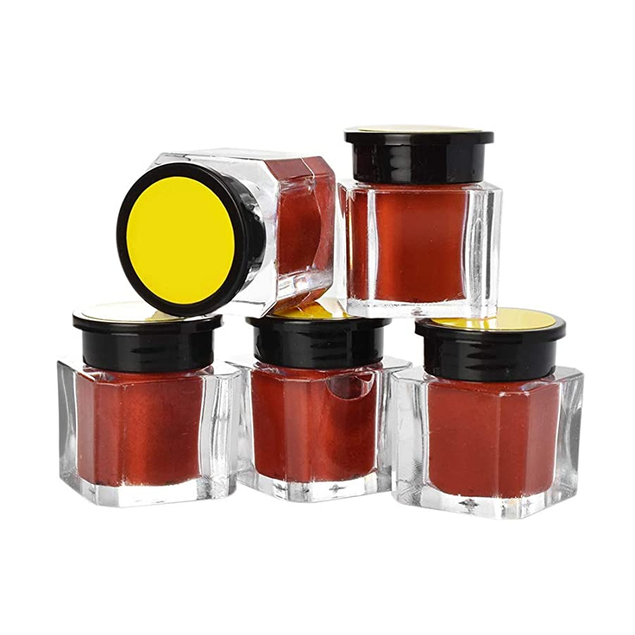 シーンライオネルグリーンストリートライオネルグリーンストリートSUPVOX 5本タトゥー顔料インク眉アイライナーボディーアート塗料マイクロブレード色(コーヒー)