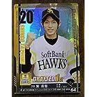 BBH2009 DR巽 真悟(ソフトバンク)