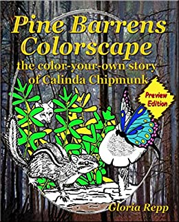 Pine Barrens Colorscape: Preview