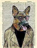 Xykhlj Pintura por numeros para Adultos - Animal- Bulldog francés - Lienzo preimpreso - Principiantes Niños DIY - DIY Decoración del hogar - 40x50cm - (Sin Marco)