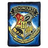 Harry Potter, 'Hidden School' Micro Raschel Throw Blanket, 46' x 60', Multi Color