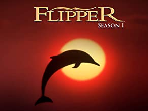 Best flipper episodes season 1 Reviews