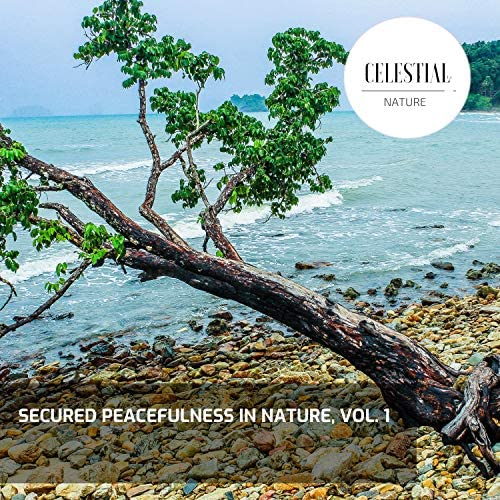 Nature Radiance & Nature Atmospheres