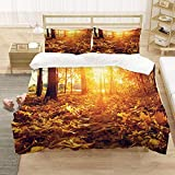 SLQL Juego de ropa de cama Anime Themed con diseño de El sol hundido ilumina las hojas, juego de 3 piezas, funda nórdica y 2 fundas de almohada de microfibra suave de 135 x 200 cm