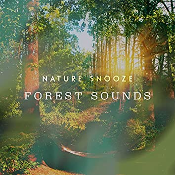 Nature Snooze: Forest Sounds
