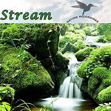 Stream (Nature Recordings)