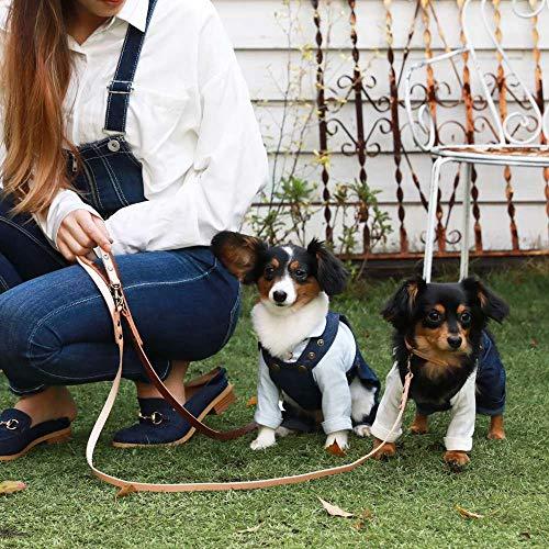 Vague(ヴァーグ)首輪カウスキンカラーリードナチュラル小型犬用Lサイズ