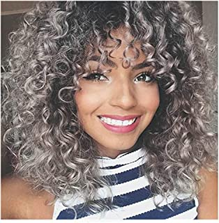Amaping Gradient Color Afro Curly Mix Gray Hair Women Wigs Simulated Human Hair With Baby Hair Full High Density Mixed Colors Synthetic Wig (Curly Gray for Black Women)