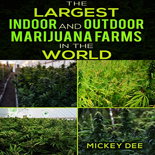 The Largest Indoor and Outdoor Marijuana Farms in the World audiobook cover art