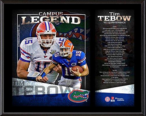 Tim Tebow Florida Gators 12' x 15' Campus Legend Sublimated Player...