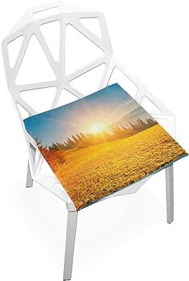 Amazon.com: Plao almohadilla de asiento de cojín flores de ...