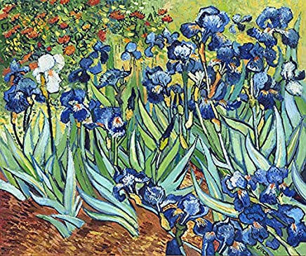 3D Decor Art Painting of Vincent van Gogh Iris Artwork on Canvas with Touchable Brush Strokes and Textures of Oil Paintings 018 50X60