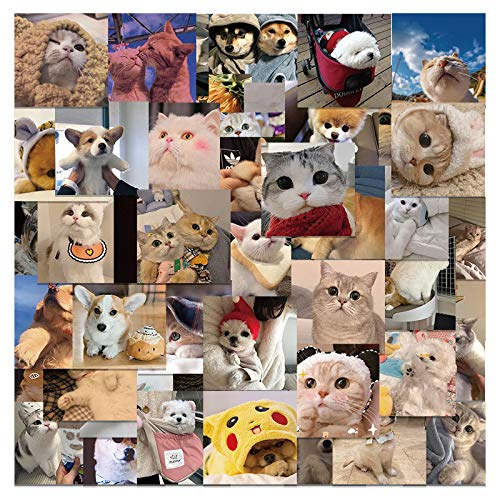 XIAMU Cute Net Red Cat Cat Dog Emoji Bag Laptop Skateboard Etiqueta Impermeable 48 Piezas