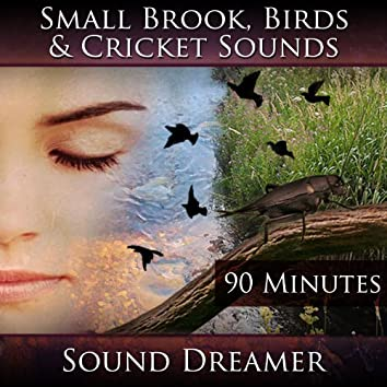 Small Brook Birds and Cricket Sounds - 90 Minutes