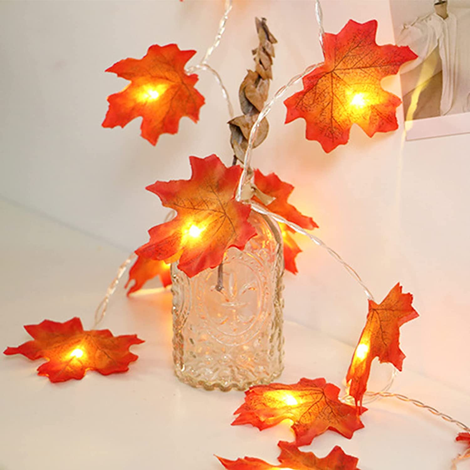 Thanksgiving Decor Fall Lights Battery LEDs Ma 20 Cash special price 10FT Ranking TOP15 Operated