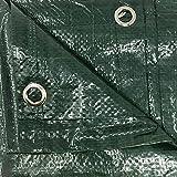 Tenax Cover All, Telo Occhiellato Copritutto 3,00x4 m Verde, Telone con Occhielli, 3x4 m