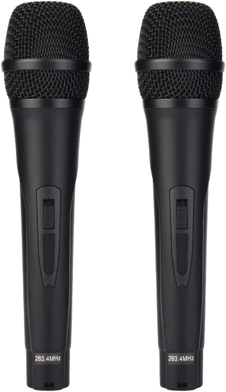 Directly managed store Hatirea Mini Rechargeable Professional Karaoke Kit Home depot