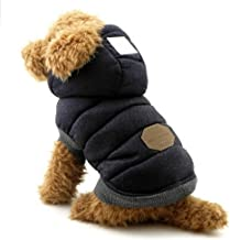 Best toy poodle clothing Reviews