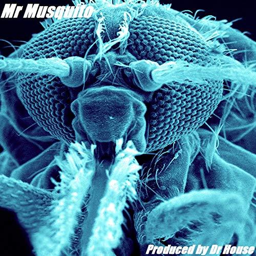 Mr Mosquito (Original Mix)