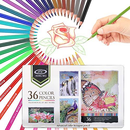 36 Buntstifte Set, FEALING Zeichnen Bleistifte Art Set für professionelle Farbmischung Malen und Skizzen, Holzfarbstifte perfekt für Schüler Kinder Malbücher