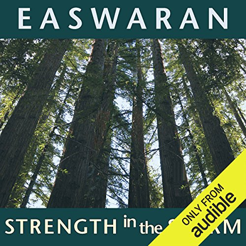 Strength in the Storm audiobook cover art