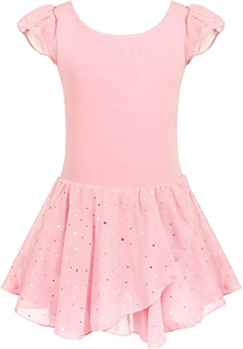 Arshiner Girls Ruffle Sleeve Ballet Dance Dress Tutu Skirted Leotard
