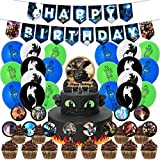 Nelton Birthday Party Supplies For How To Train Your Dragon Includes Banner - Cake Topper - 24 Cupcake Toppers - 18 Balloons