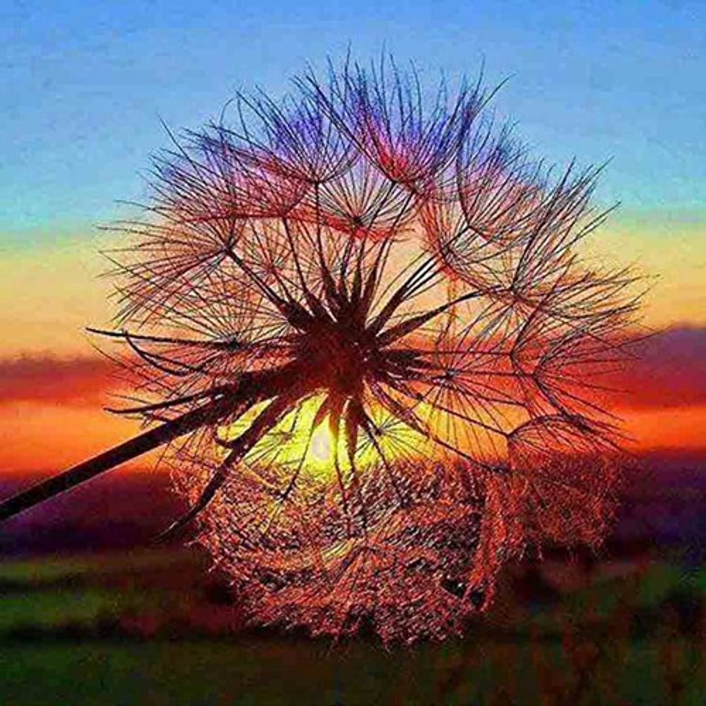 5D DIY Diamond Painting by Number Kit,Full Drill Embroidery Painting Cross Stitch Art Craft Home Decoration (Dandelion 2)