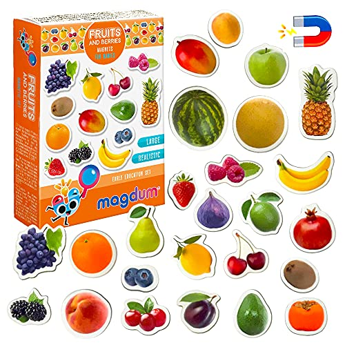 Kühlschrankmagnete kinder MAGDUM Obst& Beeren FOTO - 25 GROßE Kühlschrank Magnete für Kleinkinder - Kinder magnete - Magnete für magnettafel - Magnete kühlschrank - Magnete kinder - Magnettafel kinder