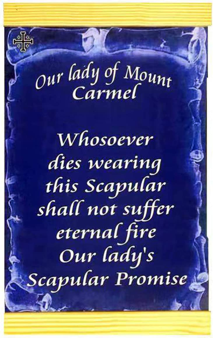 """Our Lady of Mount Carmel wall Max 78% OFF 8""""X12"""" National products hanging La print canvas"""