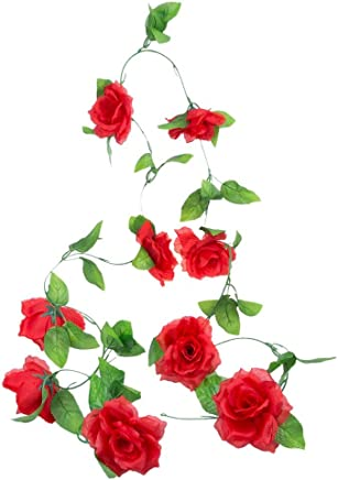 6 X 8 Pouces Photos Multicolor Diythinker Fleur De Vigne