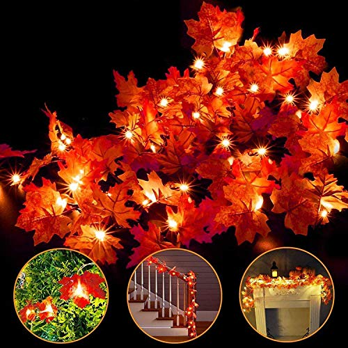 Price comparison product image Camlinbo 3 Pack Thanksgiving Decorations Thanksgiving Decor Pumpkin Decoration Thanksgiving Lights,  30Ft / 60 Led Lighted Garland Battery Garland Home Indoor Outdoor Decor Thanksgiving Decoration