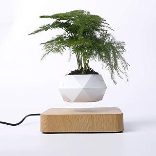 YXZQ Levitating Magnetic Floating Air Bonsai Pot Magnetic Levitation Suspension Flower Pot Micro Landscape Gardening for H...