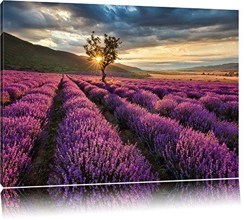 Traumhafte Lavendel Provence mit einsamen Baum Format: 120x80 auf Leinwand, XXL riesige Bilder fertig gerahmt mit Keilrahmen, Kunstdruck auf Wandbild mit Rahmen, günstiger als Gemälde oder Ölbild, kein Poster oder Plakat